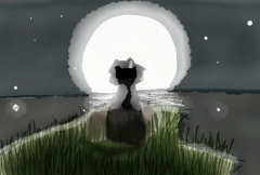Moonlit - Cropped